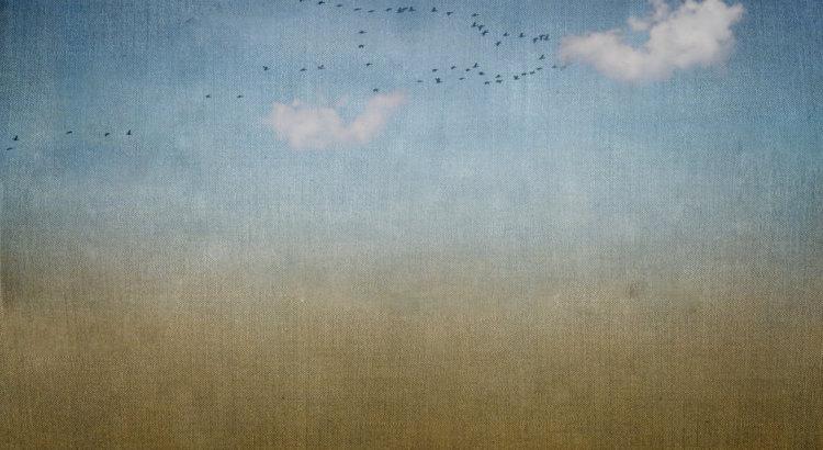 background_texture_01_by_knipser31405-d5jc6tk